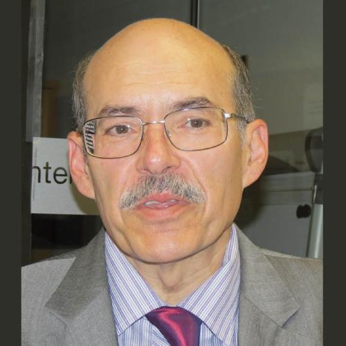 Dr. Luis Giner Tarrida